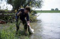 Hochwasser ist oft ein magischer Moment!