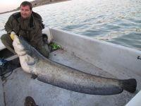Franks erster 2-Meter-Fisch