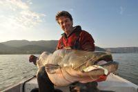 Munteres Beißen - tolle Fische auf 11er Zanderslotties!