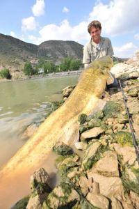 Ulis größter Fisch an der Baitjigger H mit 6 kg-Stroft!