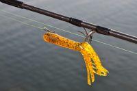Tuben üben einen unwiderstehlichen Reiz auf viele Raubfische aus!
